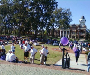 Alzheimer's and Memory Walk